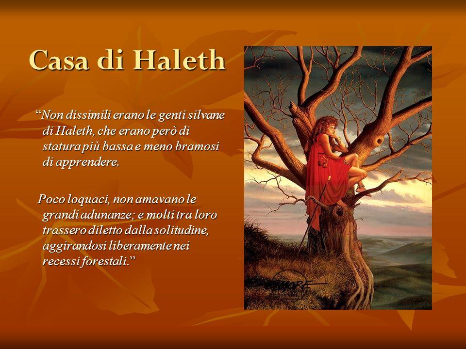 Casa di Haleth Non dissimili erano le genti silvane di Haleth, che erano però di statura più bassa e meno bramosi di apprendere. Non dissimili erano l