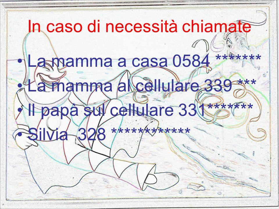 In caso di necessità chiamate La mamma a casa 0584 ******* La mamma al cellulare 339 *** Il papà sul cellulare 331******* Silvia 328 ************