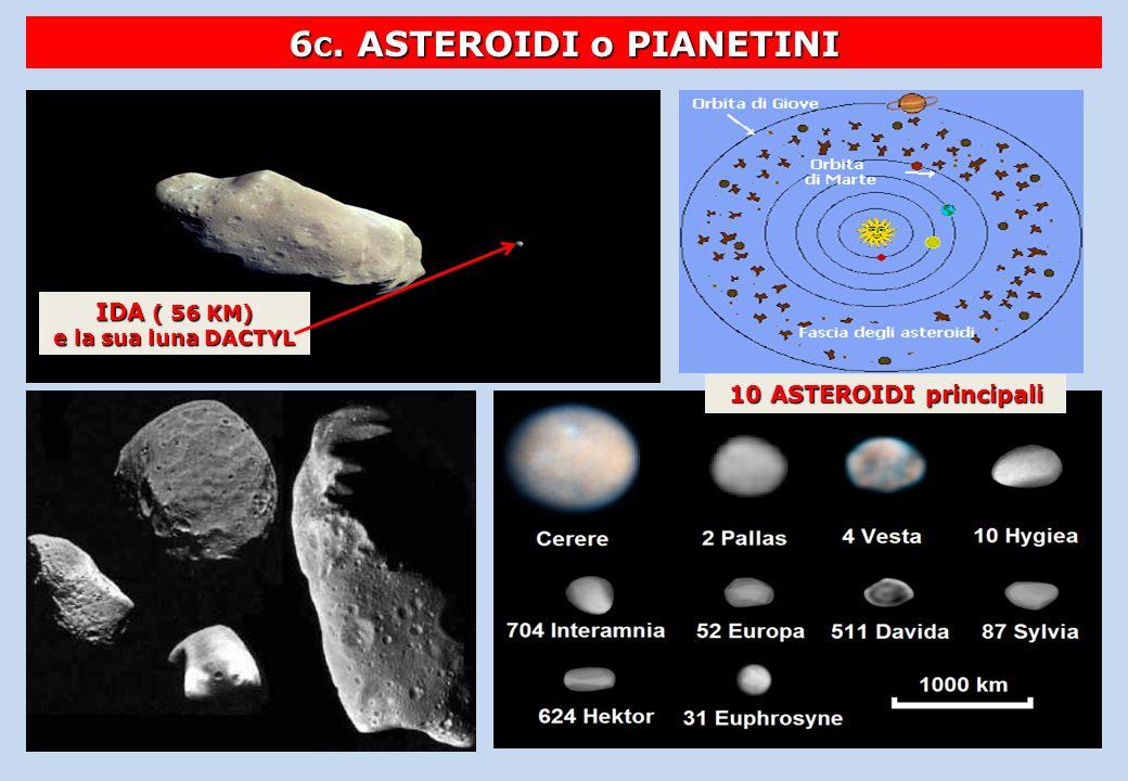 6 C. ASTEROIDI o PIANETINI IDA ( 56 KM) e la sua luna DACTYL 10 ASTEROIDI principali