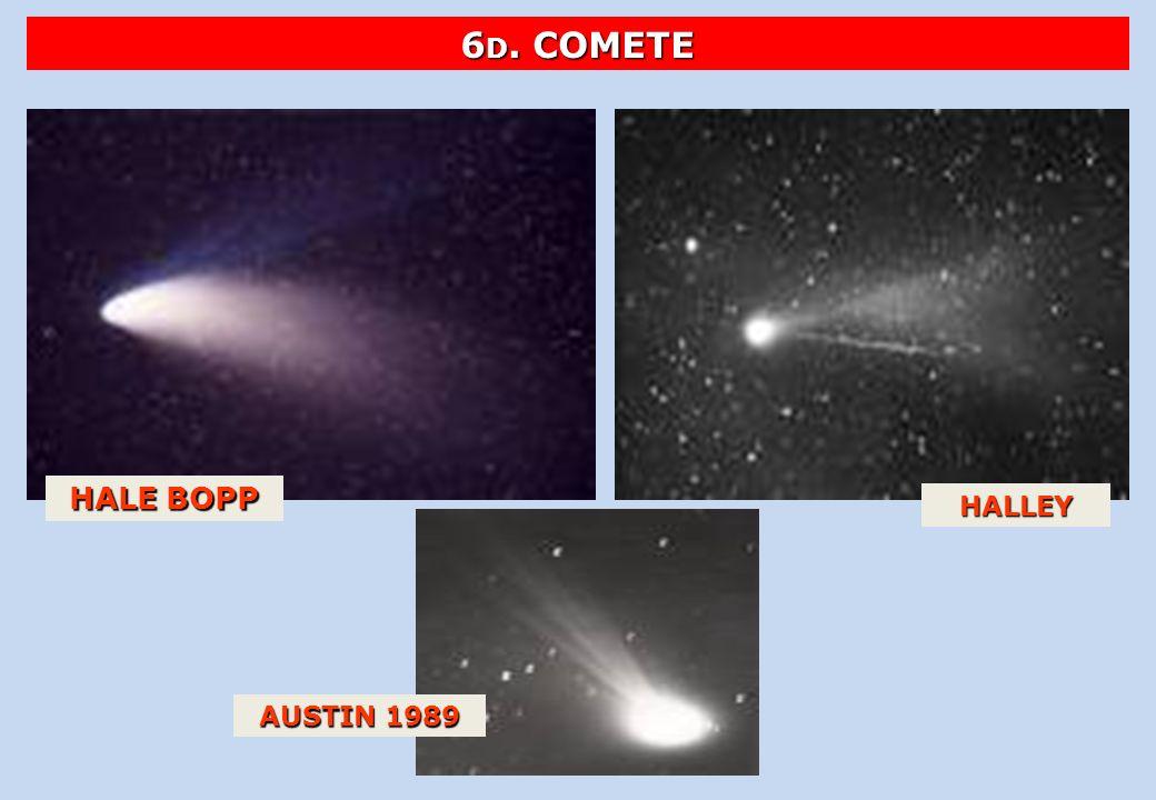HALE BOPP HALLEY AUSTIN 1989 6 D. COMETE
