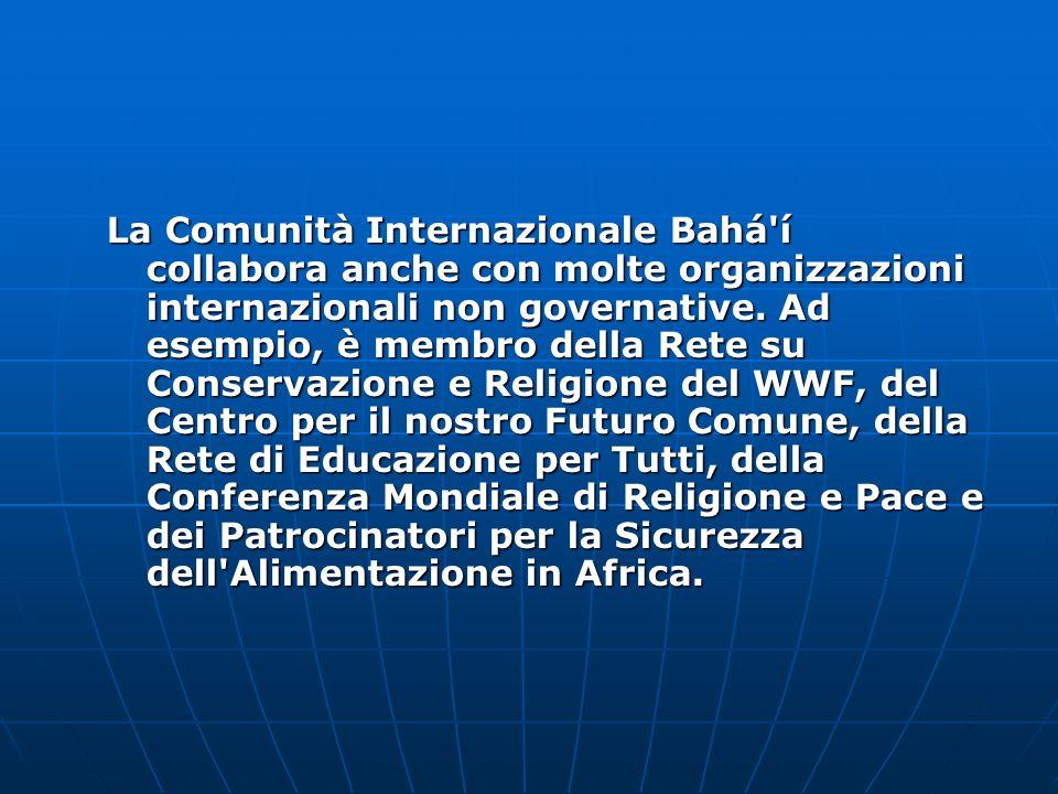 La Comunità Internazionale Bahá í collabora anche con molte organizzazioni internazionali non governative.