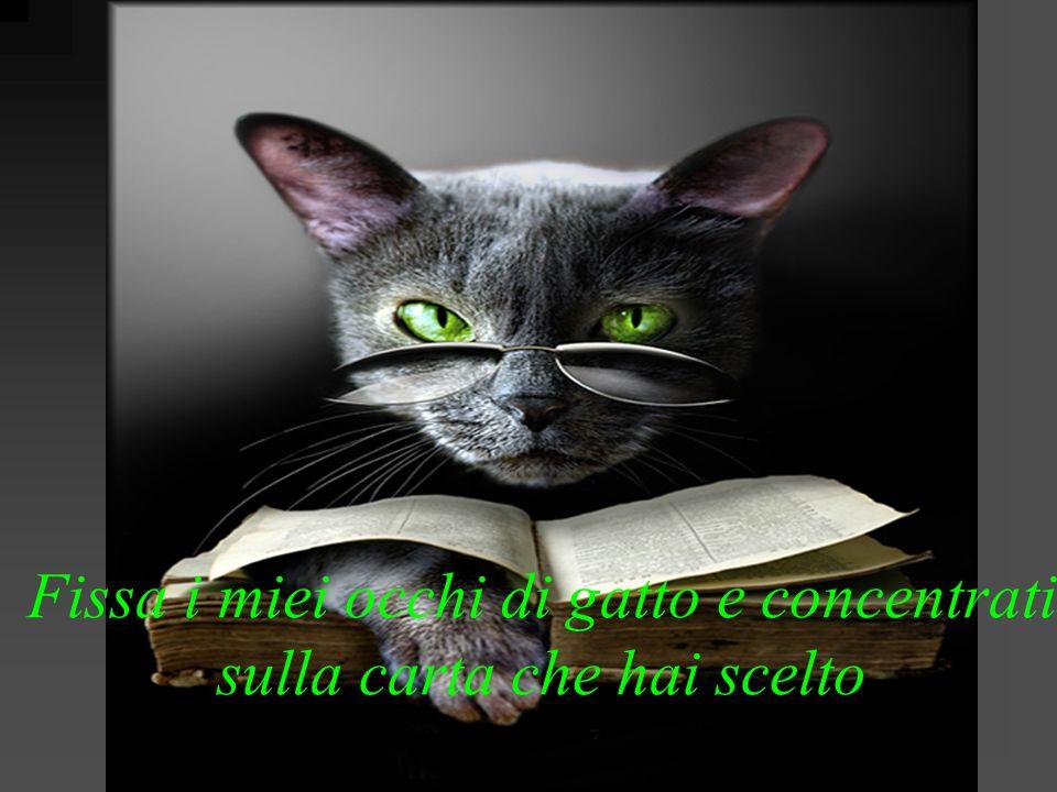 Fissa i miei occhi di gatto e concentrati sulla carta che hai scelto
