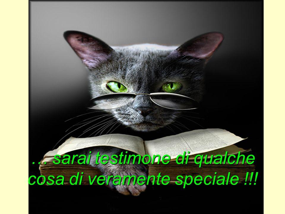… sarai testimone di qualche cosa di veramente speciale !!!