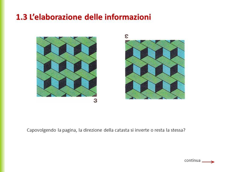continua Capovolgendo la pagina, la direzione della catasta si inverte o resta la stessa? 1.3 Lelaborazione delle informazioni