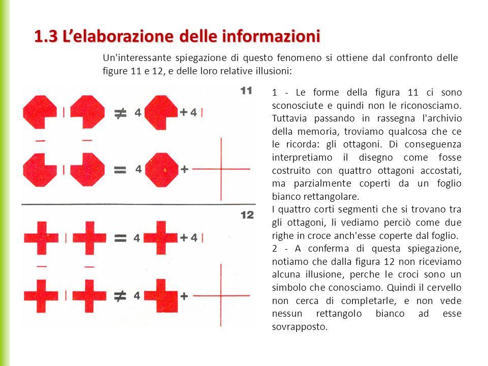 Un'interessante spiegazione di questo fenomeno si ottiene dal confronto delle figure 11 e 12, e delle loro relative illusioni: 1.3 Lelaborazione delle