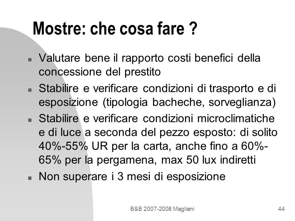 B&B 2007-2008 Magliani44 Mostre: che cosa fare ? n Valutare bene il rapporto costi benefici della concessione del prestito n Stabilire e verificare co