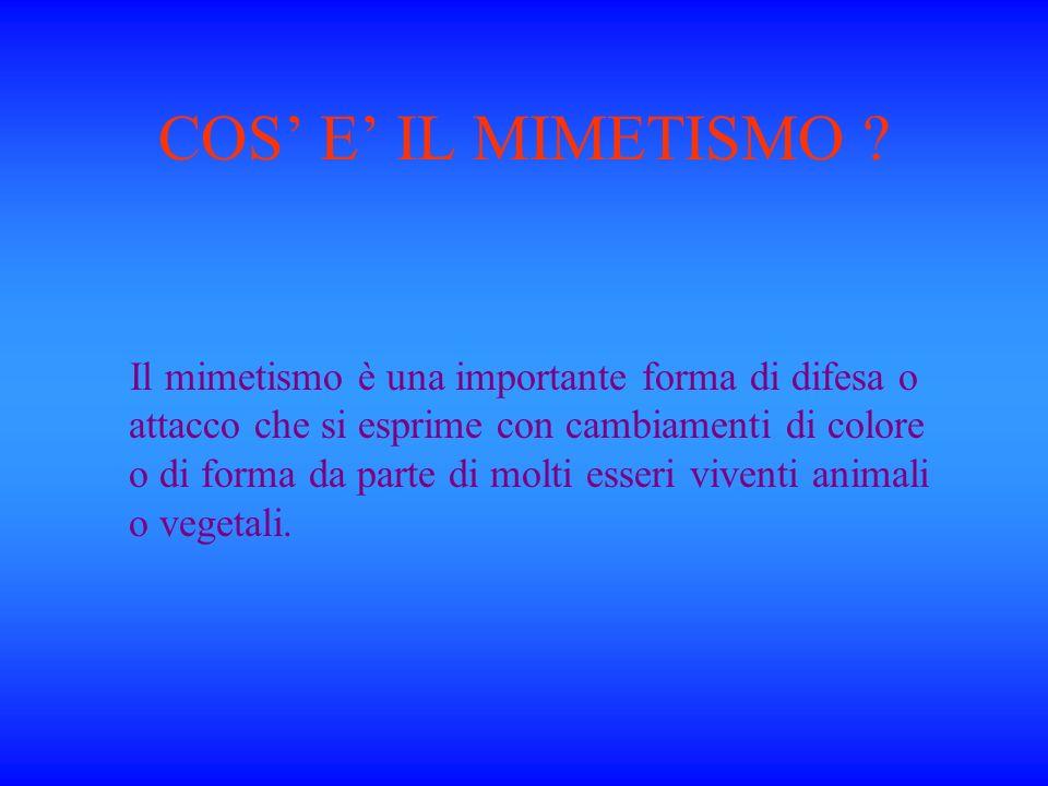 COS E IL MIMETISMO .