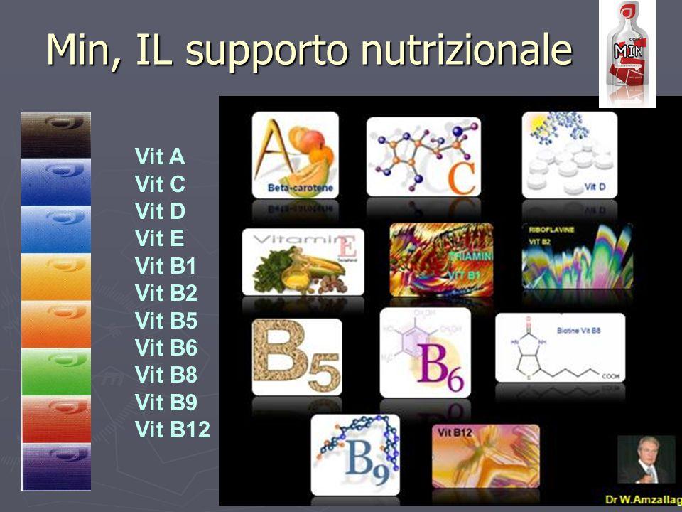 Vit A Vit C Vit D Vit E Vit B1 Vit B2 Vit B5 Vit B6 Vit B8 Vit B9 Vit B12 Min, IL supporto nutrizionale