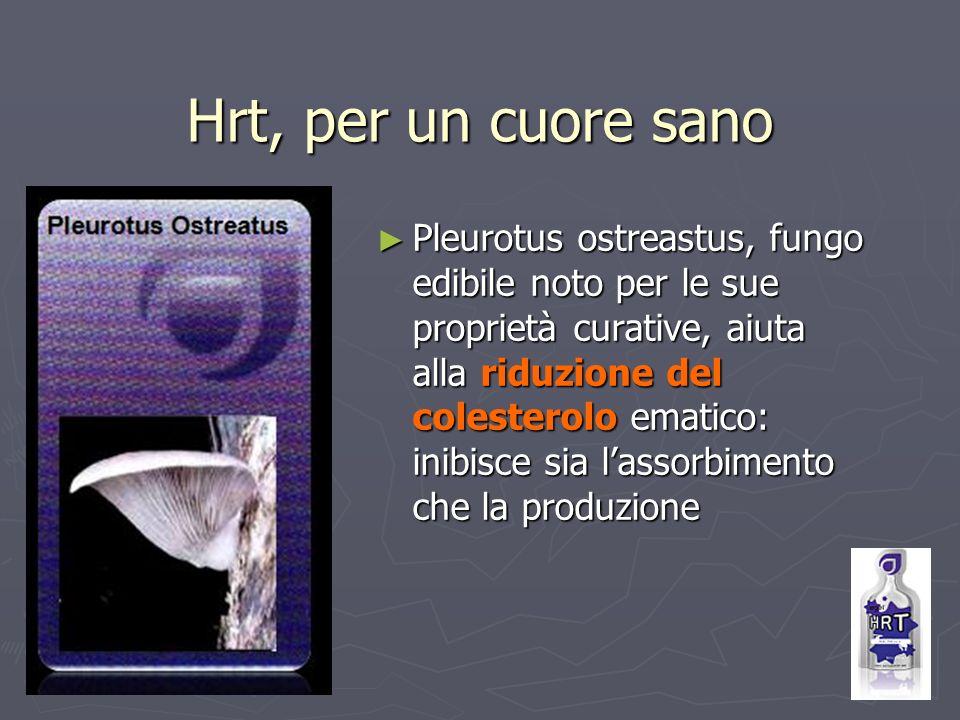 Hrt, per un cuore sano Pleurotus ostreastus, fungo edibile noto per le sue proprietà curative, aiuta alla riduzione del colesterolo ematico: inibisce