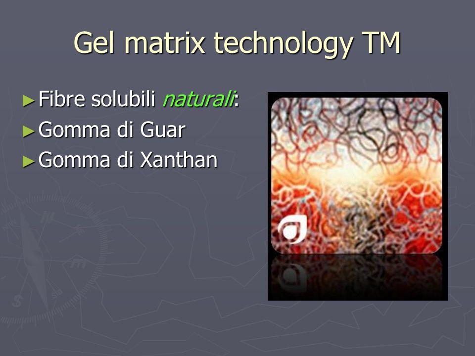Gel matrix technology TM Fibre solubili naturali: Fibre solubili naturali: Gomma di Guar Gomma di Guar Gomma di Xanthan Gomma di Xanthan