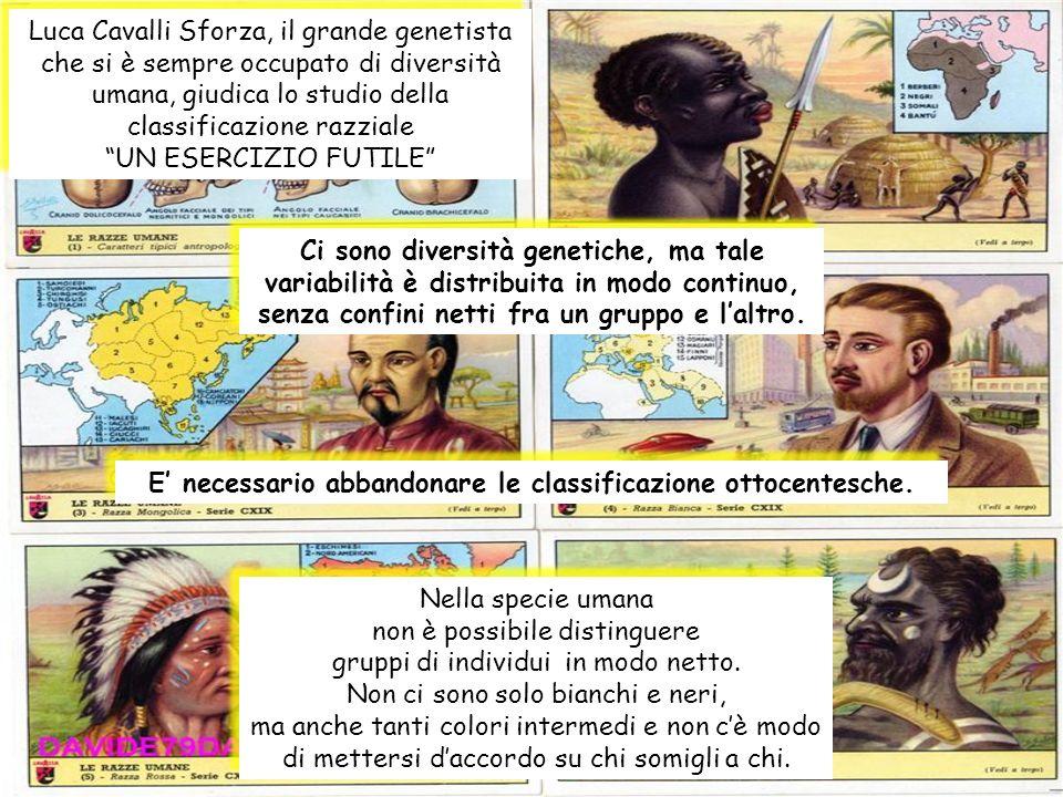 Luca Cavalli Sforza, il grande genetista che si è sempre occupato di diversità umana, giudica lo studio della classificazione razziale UN ESERCIZIO FU