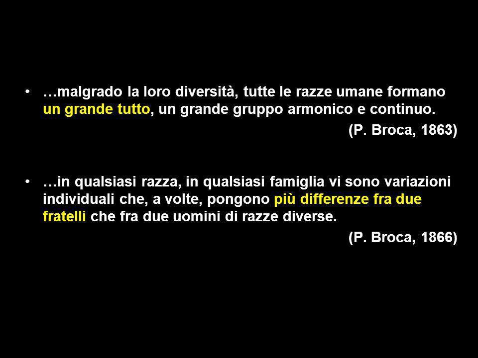 …malgrado la loro diversità, tutte le razze umane formano un grande tutto, un grande gruppo armonico e continuo. (P. Broca, 1863) …in qualsiasi razza,