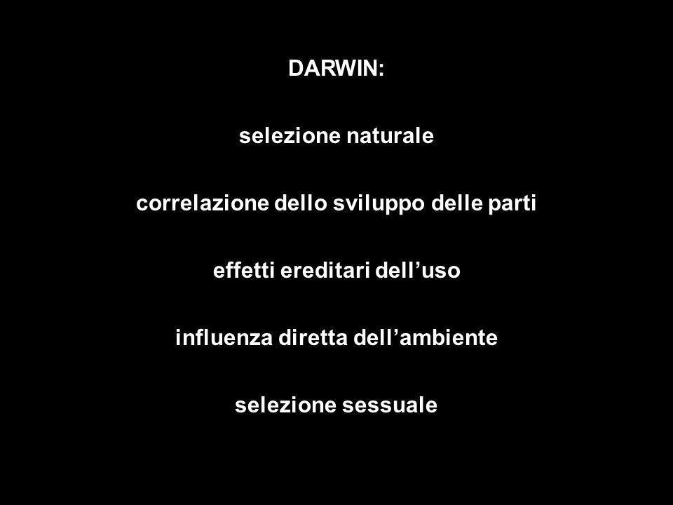 DARWIN: selezione naturale correlazione dello sviluppo delle parti effetti ereditari delluso selezione sessuale influenza diretta dellambiente