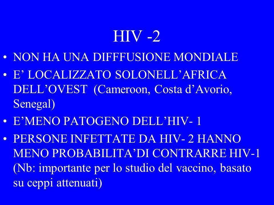 HIV- 1 Almeno tre ceppi diversi di virus HIV - 1 furono trasferiti dalla scimmie il gruppo M (majority), responsabile dellepidemia mondiale N (non M, non O), scoperto più di recente, diffuso solo nel Cameroon O (outlier) : pochi ceppi, localizzati in Cameroon Guinea Equatoriale, Gabon)