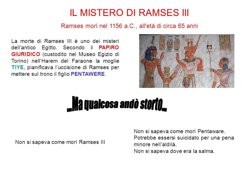 La morte di Ramses III è uno dei misteri dellantico Egitto. Secondo il PAPIRO GIURIDICO (custodito nel Museo Egizio di Torino) nellHarem del Faraone l