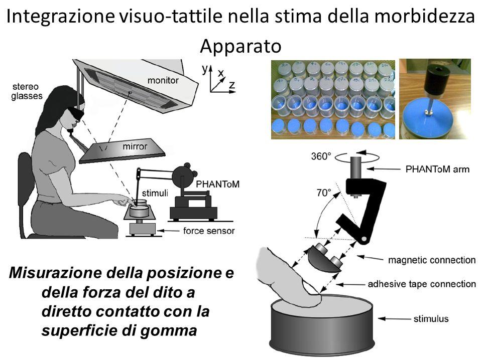 Misurazione della posizione e della forza del dito a diretto contatto con la superficie di gomma Apparato Integrazione visuo-tattile nella stima della