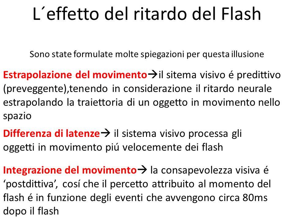 Estrapolazione del movimento il sitema visivo é predittivo (preveggente),tenendo in considerazione il ritardo neurale estrapolando la traiettoria di u