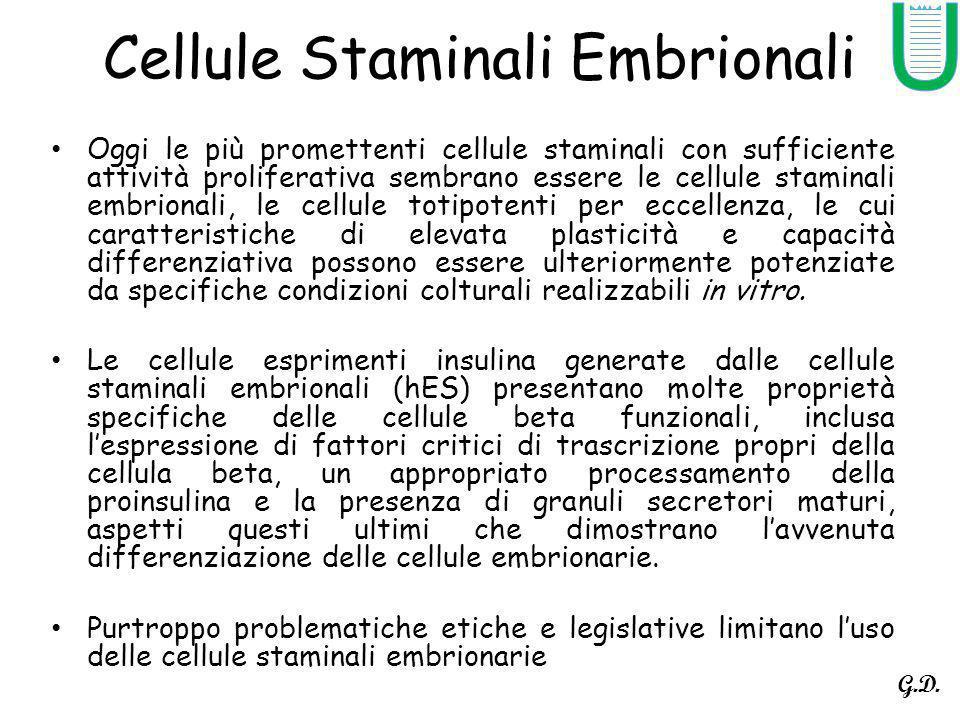 Cellule Staminali Embrionali Oggi le più promettenti cellule staminali con sufficiente attività proliferativa sembrano essere le cellule staminali embrionali, le cellule totipotenti per eccellenza, le cui caratteristiche di elevata plasticità e capacità differenziativa possono essere ulteriormente potenziate da specifiche condizioni colturali realizzabili in vitro.