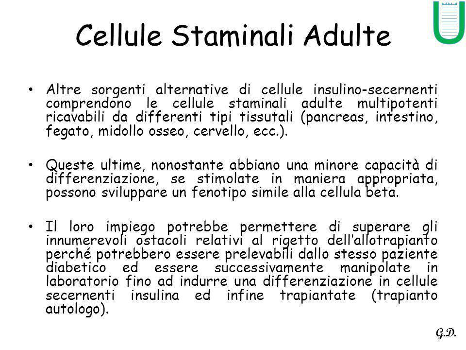 Cellule Staminali Adulte Altre sorgenti alternative di cellule insulino-secernenti comprendono le cellule staminali adulte multipotenti ricavabili da differenti tipi tissutali (pancreas, intestino, fegato, midollo osseo, cervello, ecc.).