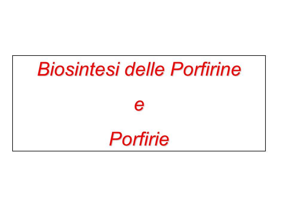 Biosintesi delle Porfirine ePorfirie