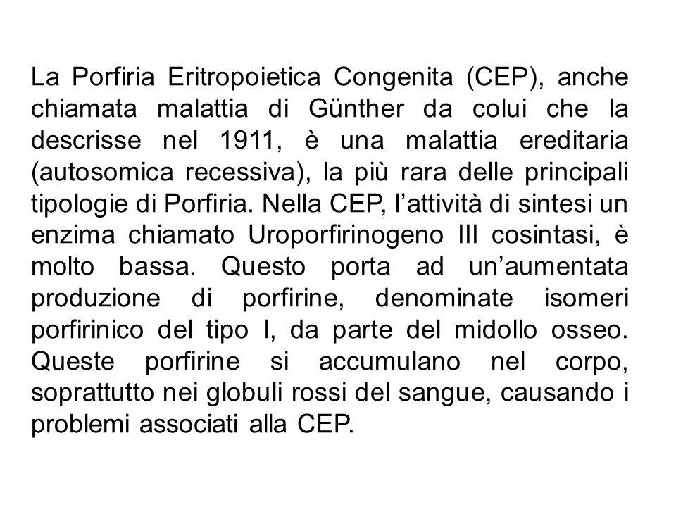 La Porfiria Eritropoietica Congenita (CEP), anche chiamata malattia di Günther da colui che la descrisse nel 1911, è una malattia ereditaria (autosomi