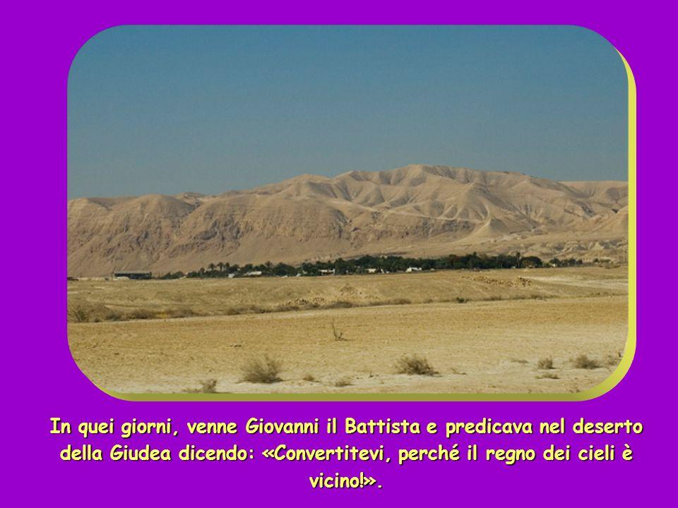 + Dal Vangelo secondo Matteo ( Mt 3,1-12 ) + Dal Vangelo secondo Matteo ( Mt 3,1-12 )