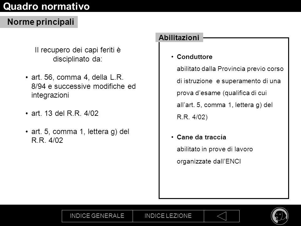 INDICE GENERALEINDICE LEZIONE Quadro normativo Il recupero dei capi feriti è disciplinato da: art. 56, comma 4, della L.R. 8/94 e successive modifiche