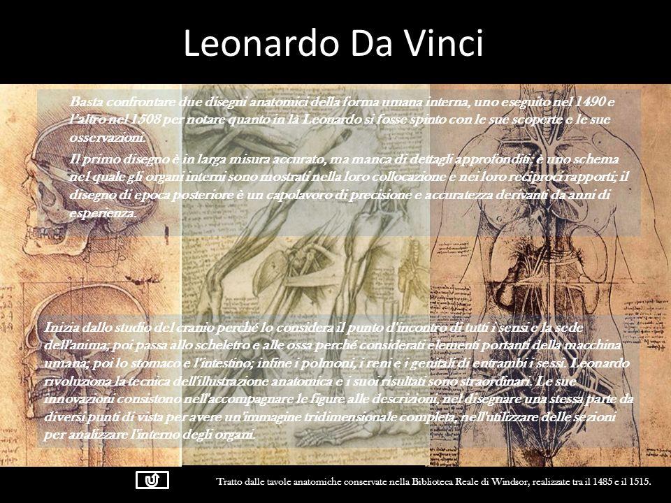Leonardo Da Vinci Basta confrontare due disegni anatomici della forma umana interna, uno eseguito nel 1490 e laltro nel 1508 per notare quanto in là L