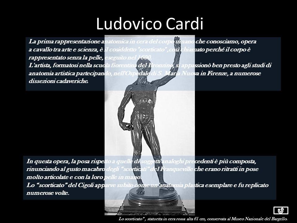 Ludovico Cardi La prima rappresentazione anatomica in cera del corpo umano che conosciamo, opera a cavallo tra arte e scienza, è il cosiddetto