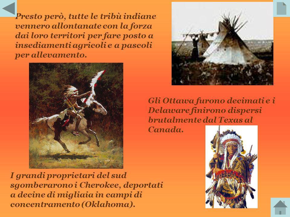 A nord, le tribù dei Madian scambiavano con i Francesi pellicce semilavorate in cambio di fucili che poi vendevano nelle Grandi Pianure; allo stesso m