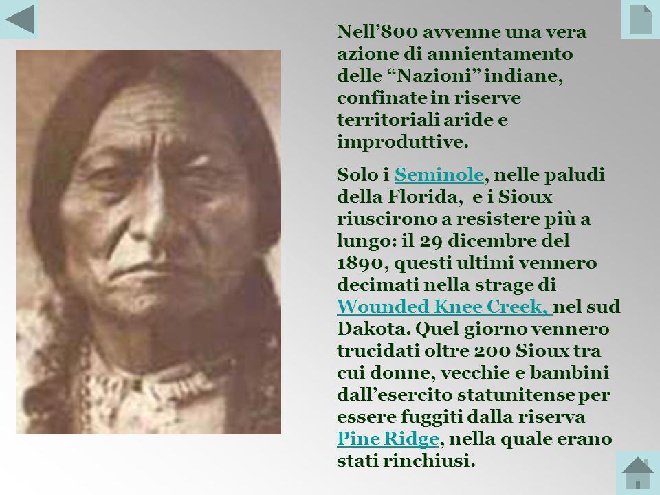 Presto però, tutte le tribù indiane vennero allontanate con la forza dai loro territori per fare posto a insediamenti agricoli e a pascoli per allevam