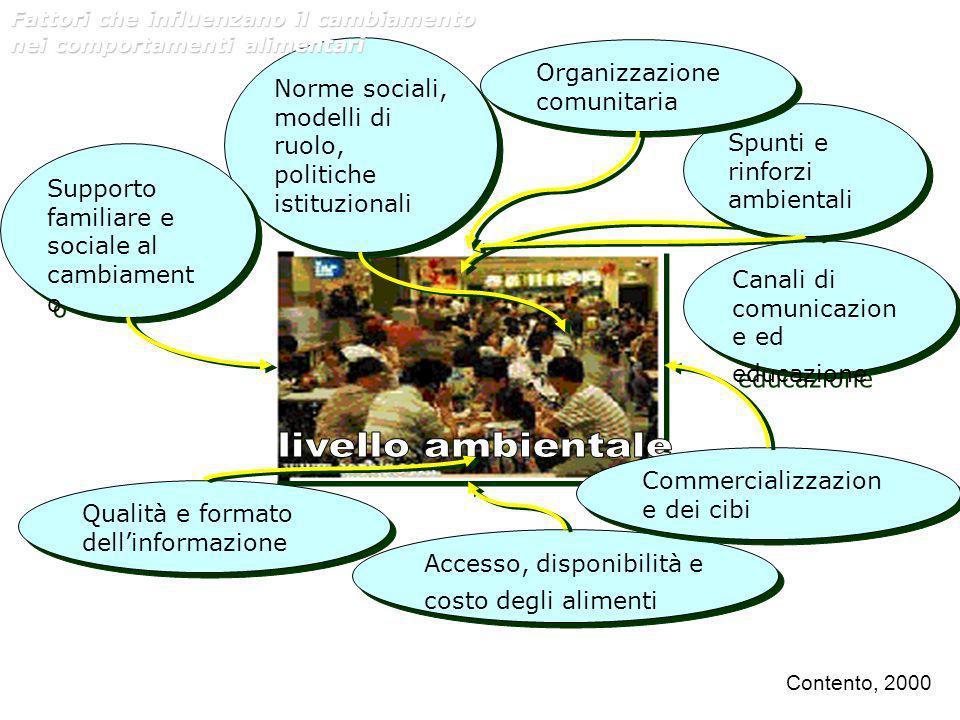 Qualità e formato dellinformazione Accesso, disponibilità e costo degli alimenti Commercializzazion e dei cibi Canali di comunicazion e ed educazione