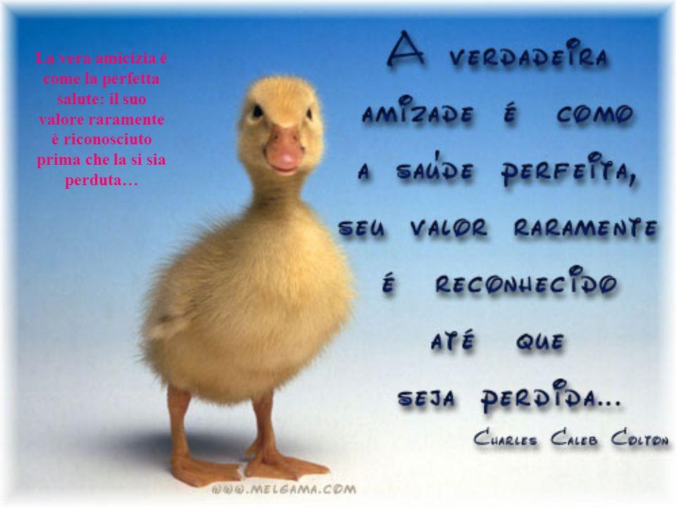La vera amicizia è come la perfetta salute: il suo valore raramente è riconosciuto prima che la si sia perduta…