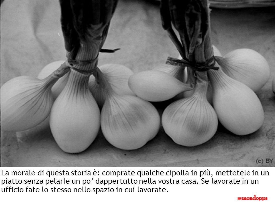 La morale di questa storia è: comprate qualche cipolla in più, mettetele in un piatto senza pelarle un po dappertutto nella vostra casa.