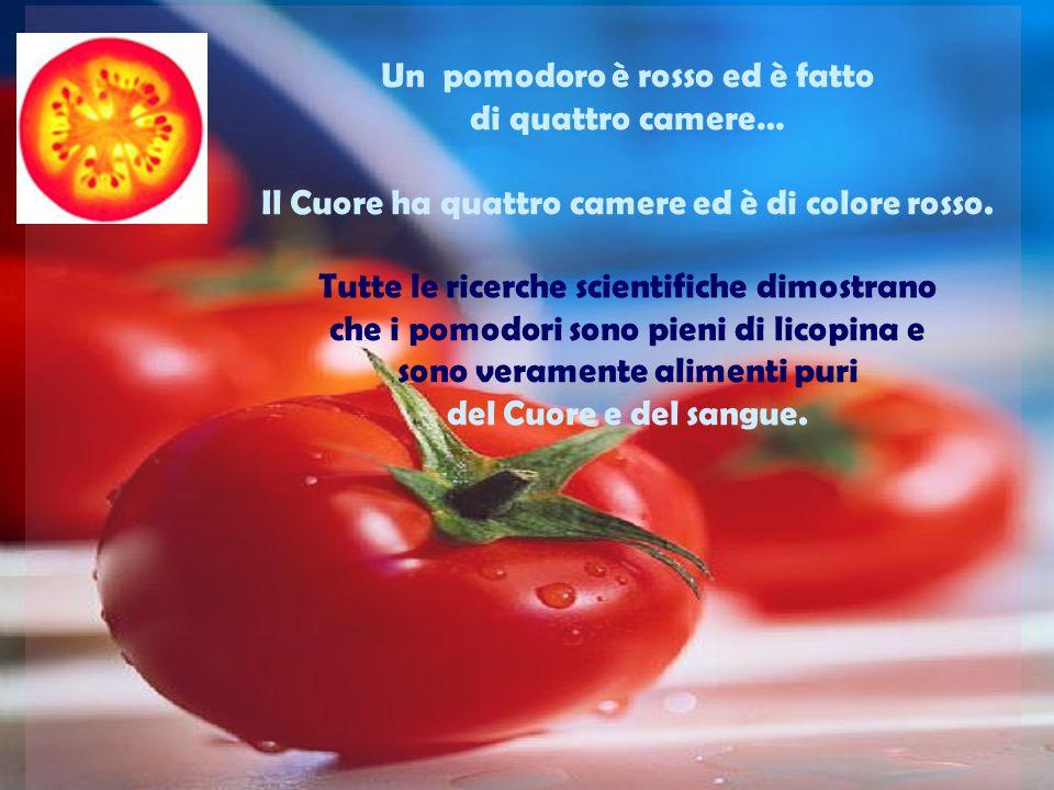 Un pomodoro è rosso ed è fatto di quattro camere… Il Cuore ha quattro camere ed è di colore rosso.