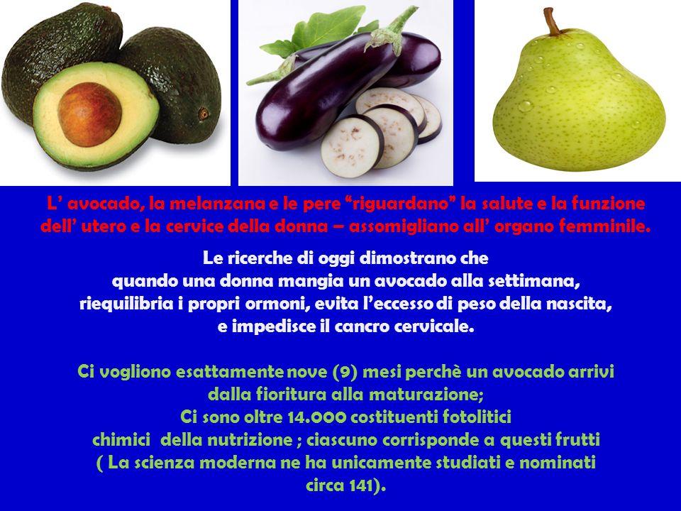 L avocado, la melanzana e le pere riguardano la salute e la funzione dell utero e la cervice della donna – assomigliano all organo femminile.