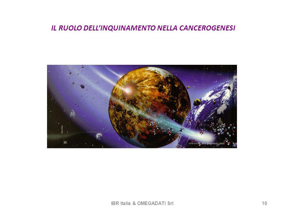 IL RUOLO DELLINQUINAMENTO NELLA CANCEROGENESI IBR Italia & OMEGADATI Srl10