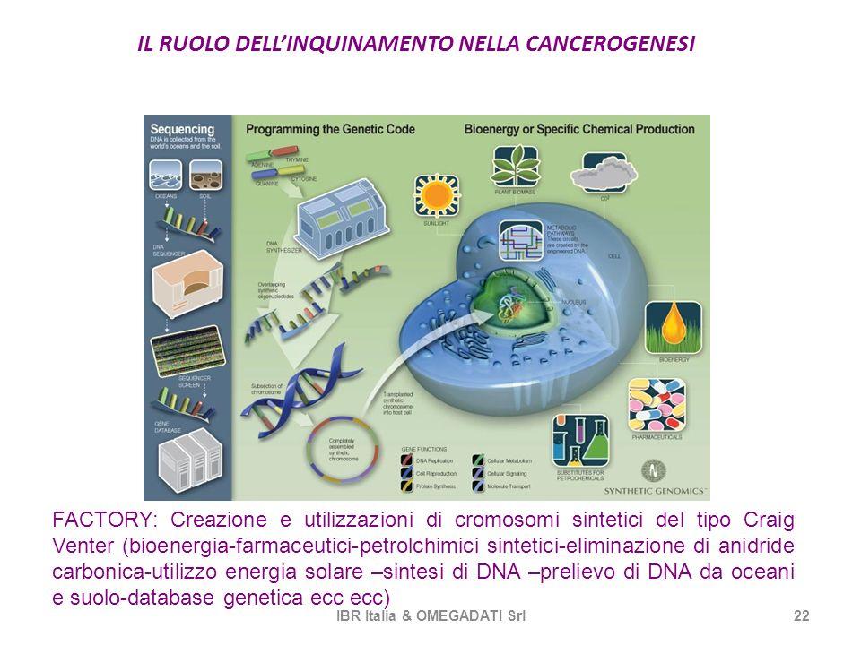 IL RUOLO DELLINQUINAMENTO NELLA CANCEROGENESI IBR Italia & OMEGADATI Srl22 FACTORY: Creazione e utilizzazioni di cromosomi sintetici del tipo Craig Ve