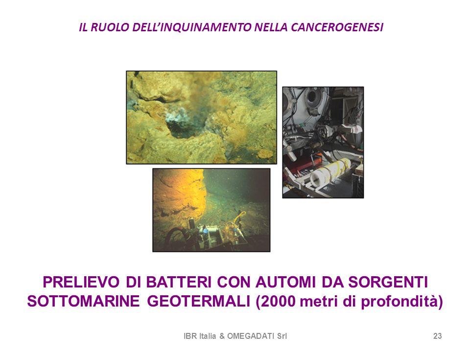 IL RUOLO DELLINQUINAMENTO NELLA CANCEROGENESI IBR Italia & OMEGADATI Srl23 PRELIEVO DI BATTERI CON AUTOMI DA SORGENTI SOTTOMARINE GEOTERMALI (2000 met