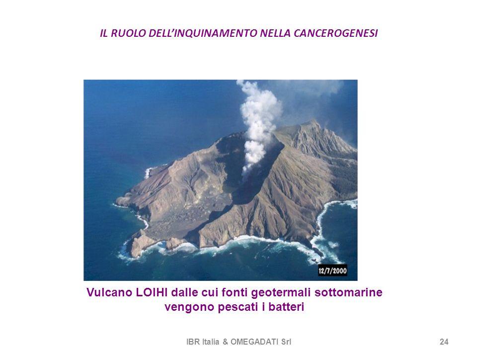 IL RUOLO DELLINQUINAMENTO NELLA CANCEROGENESI IBR Italia & OMEGADATI Srl24 Vulcano LOIHI dalle cui fonti geotermali sottomarine vengono pescati i batt