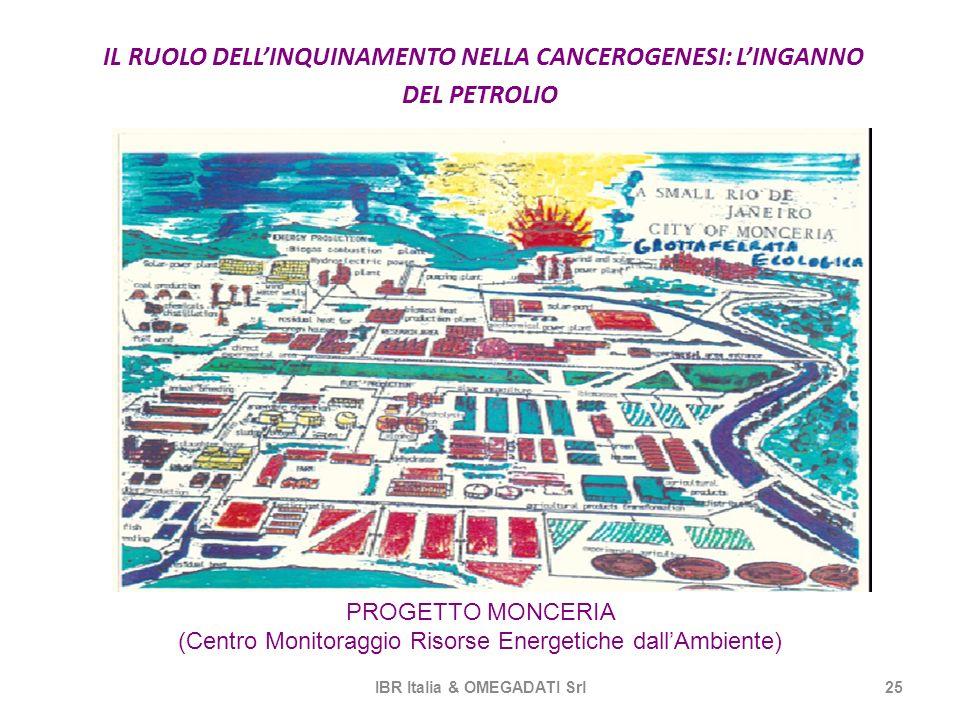 IL RUOLO DELLINQUINAMENTO NELLA CANCEROGENESI: LINGANNO DEL PETROLIO IBR Italia & OMEGADATI Srl25 PROGETTO MONCERIA (Centro Monitoraggio Risorse Energ