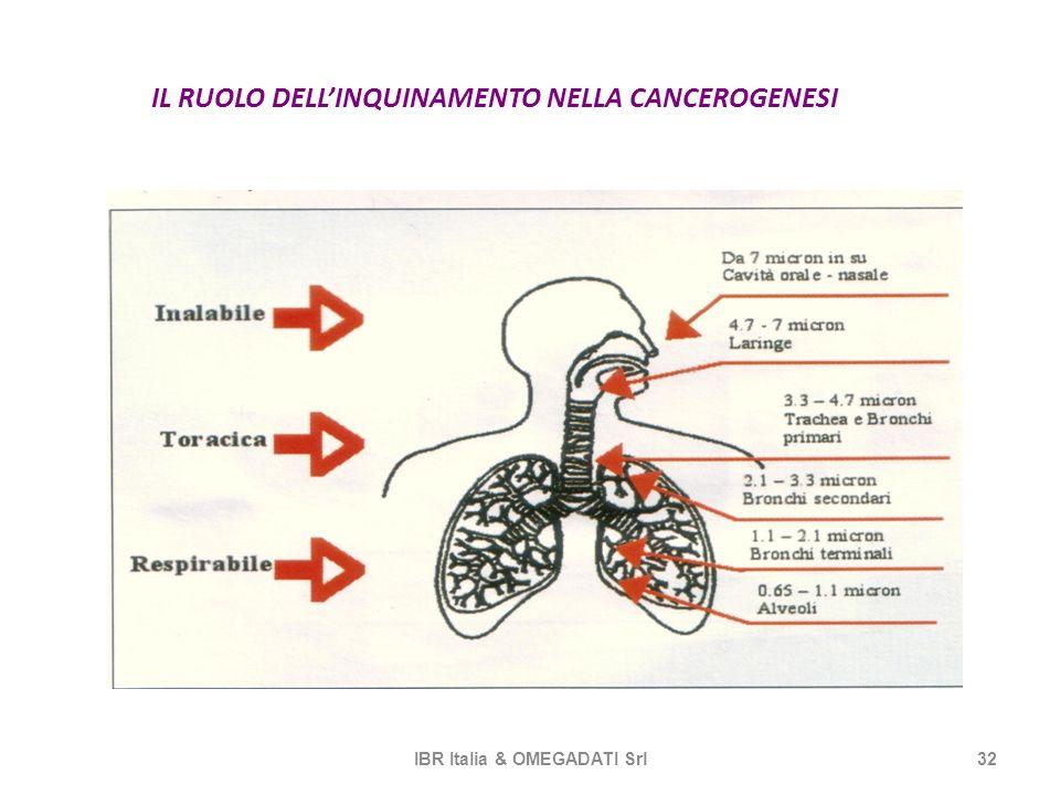 IL RUOLO DELLINQUINAMENTO NELLA CANCEROGENESI IBR Italia & OMEGADATI Srl32