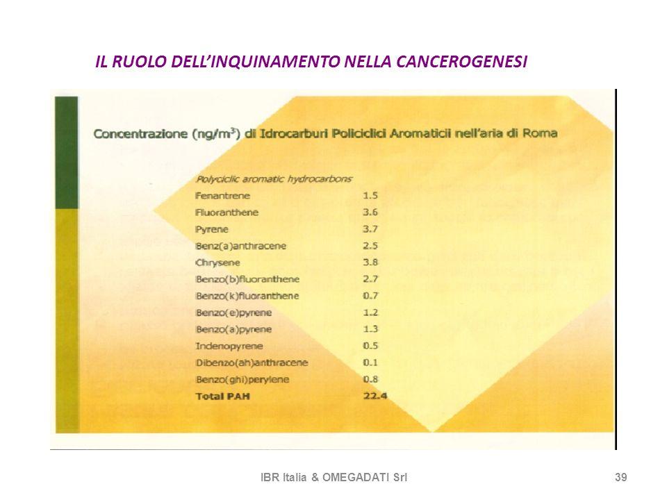 IL RUOLO DELLINQUINAMENTO NELLA CANCEROGENESI IBR Italia & OMEGADATI Srl39