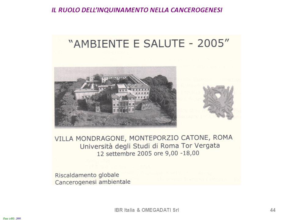 IL RUOLO DELLINQUINAMENTO NELLA CANCEROGENESI IBR Italia & OMEGADATI Srl44 Fssa: irHO. 1990 1
