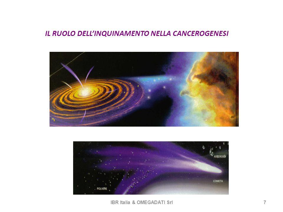 IL RUOLO DELLINQUINAMENTO NELLA CANCEROGENESI IBR Italia & OMEGADATI Srl7