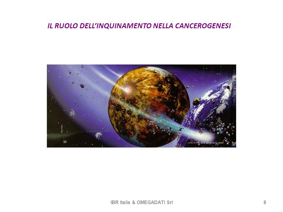 IL RUOLO DELLINQUINAMENTO NELLA CANCEROGENESI IBR Italia & OMEGADATI Srl8