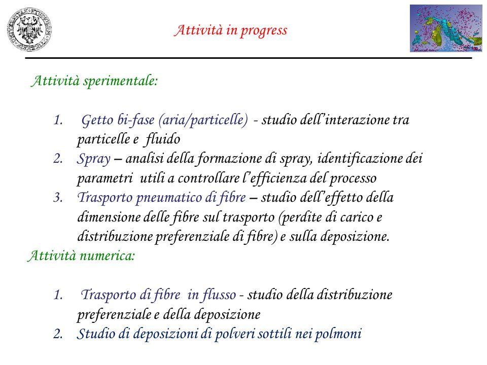 Attività in progress Attività sperimentale: 1. Getto bi-fase (aria/particelle) - studio dellinterazione tra particelle e fluido 2.Spray – analisi dell