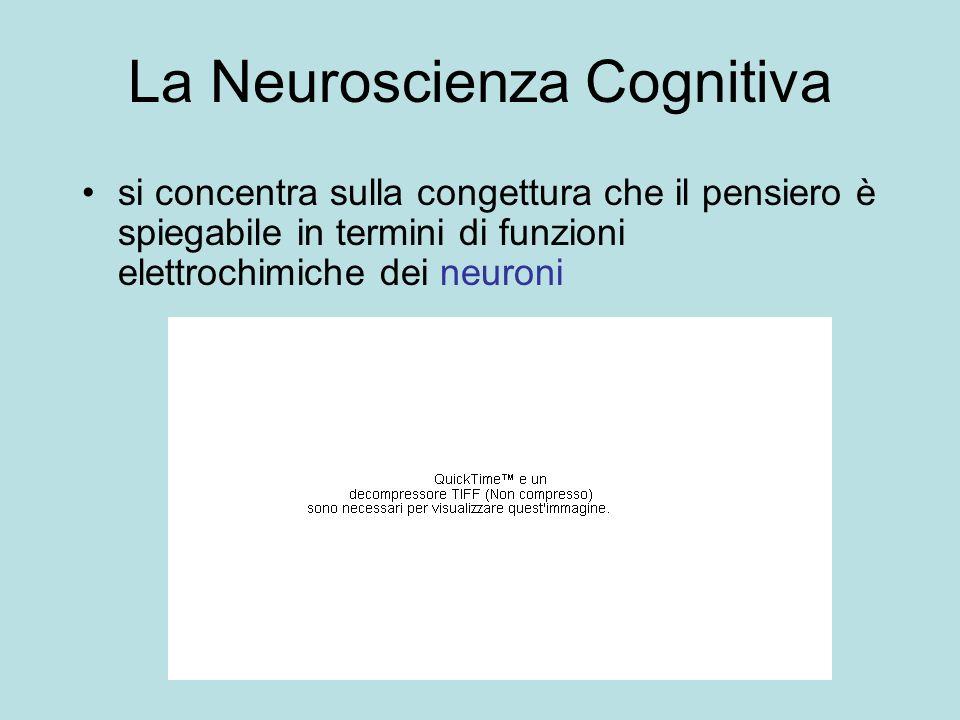 La Neuroscienza Cognitiva si concentra sulla congettura che il pensiero è spiegabile in termini di funzioni elettrochimiche dei neuroni