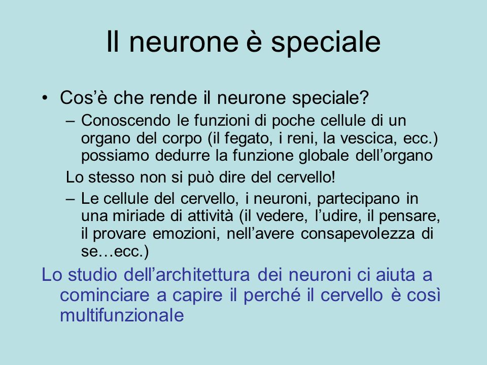 Il neurone è speciale Cosè che rende il neurone speciale? –Conoscendo le funzioni di poche cellule di un organo del corpo (il fegato, i reni, la vesci