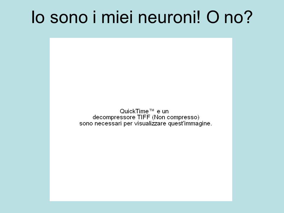 Io sono i miei neuroni! O no?